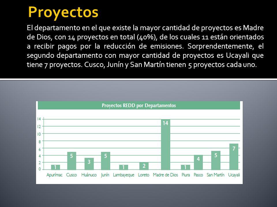 El departamento en el que existe la mayor cantidad de proyectos es Madre de Dios, con 14 proyectos en total (40%), de los cuales 11 están orientados a recibir pagos por la reducción de emisiones.