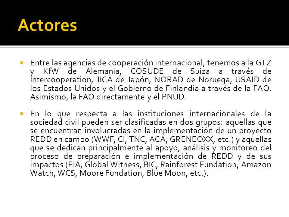 Entre las agencias de cooperación internacional, tenemos a la GTZ y KfW de Alemania, COSUDE de Suiza a través de Intercooperation, JICA de Japón, NORAD de Noruega, USAID de los Estados Unidos y el Gobierno de Finlandia a través de la FAO.