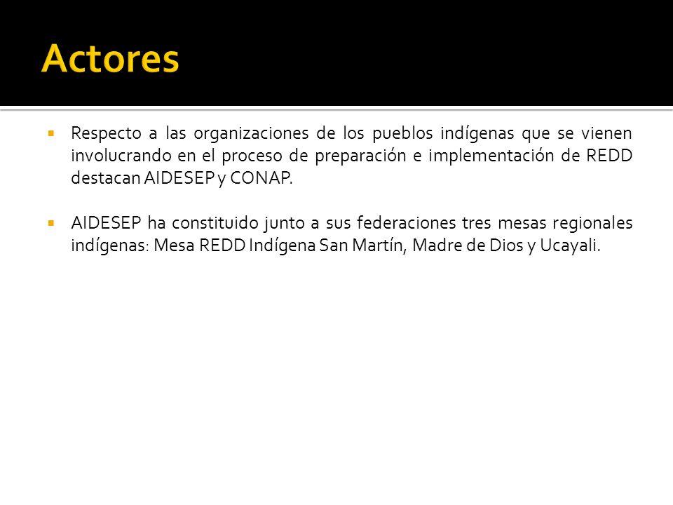Respecto a las organizaciones de los pueblos indígenas que se vienen involucrando en el proceso de preparación e implementación de REDD destacan AIDESEP y CONAP.