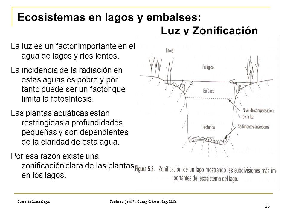Curso de Limnología Profesor: José V. Chang Gómez, Ing. M.Sc. 23 Ecosistemas en lagos y embalses: Luz y Zonificación La luz es un factor importante en