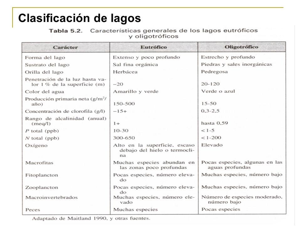 Curso de Limnología Profesor: José V. Chang Gómez, Ing. M.Sc. 24 Clasificación de lagos