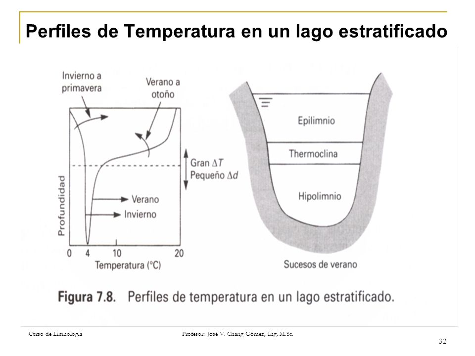 Curso de Limnología Profesor: José V. Chang Gómez, Ing. M.Sc. 32 Perfiles de Temperatura en un lago estratificado
