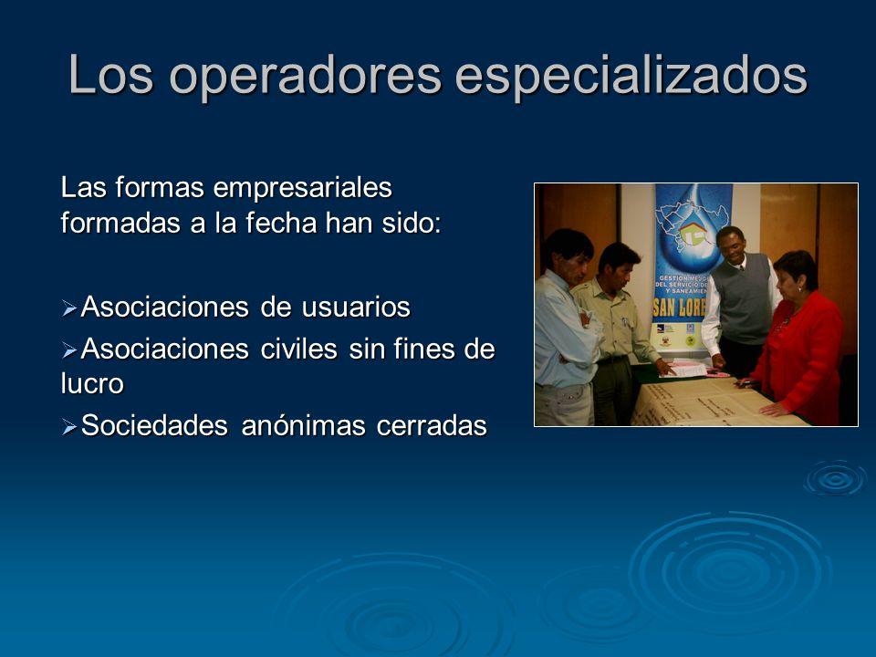 Los operadores especializados Las formas empresariales formadas a la fecha han sido: Asociaciones de usuarios Asociaciones de usuarios Asociaciones ci