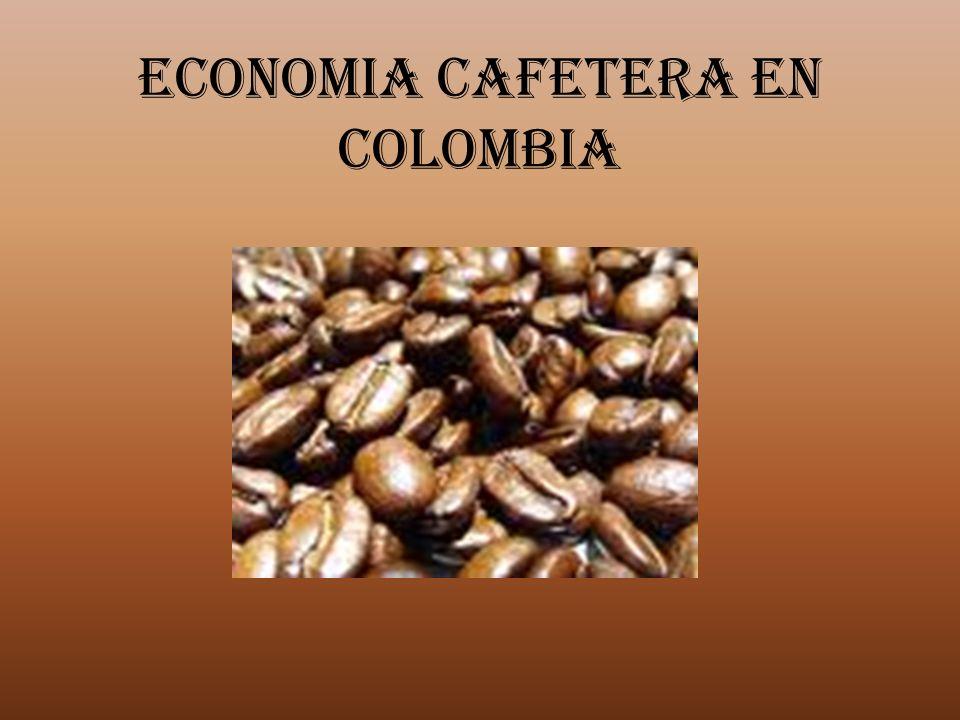 ECONOMIA CAFETERA EN COLOMBIA