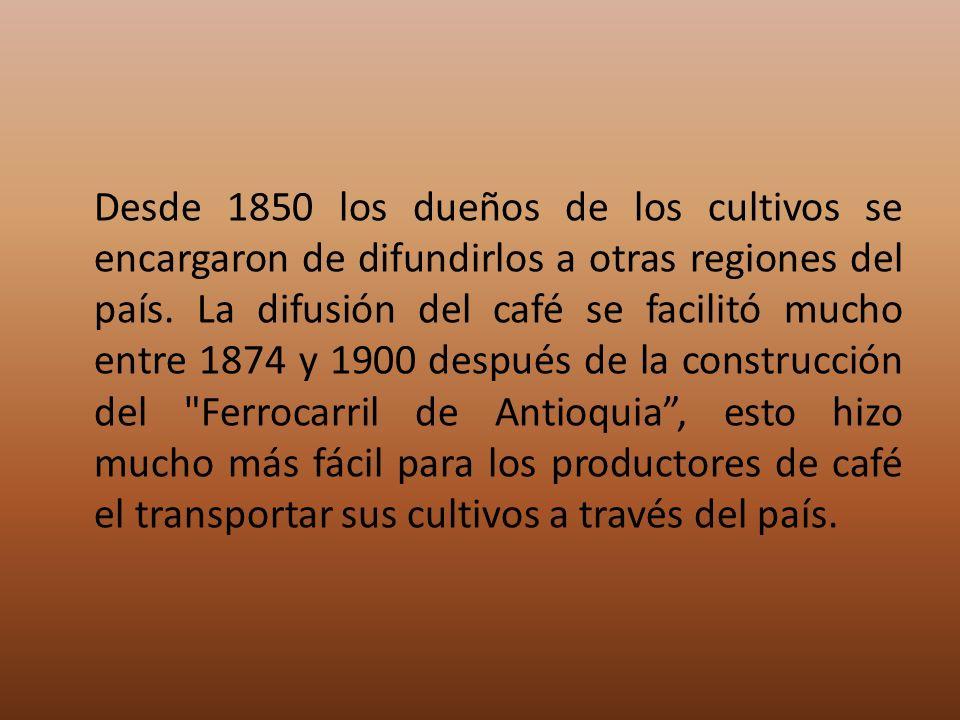Desde 1850 los dueños de los cultivos se encargaron de difundirlos a otras regiones del país. La difusión del café se facilitó mucho entre 1874 y 1900