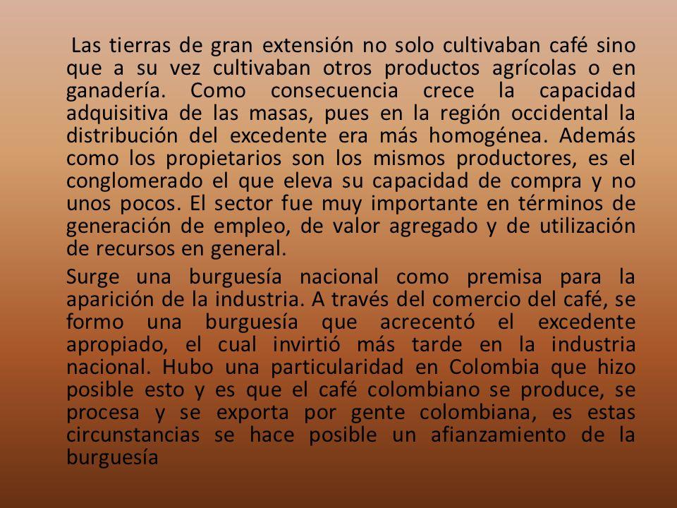 Las tierras de gran extensión no solo cultivaban café sino que a su vez cultivaban otros productos agrícolas o en ganadería. Como consecuencia crece l