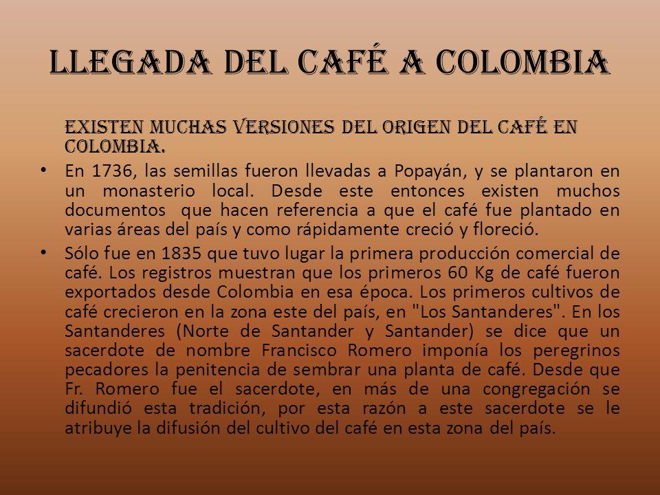 LLEGADA DEL CAFÉ A COLOMBIA Existen muchas versiones del origen del café en Colombia. En 1736, las semillas fueron llevadas a Popayán, y se plantaron