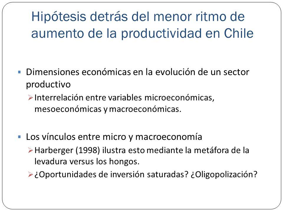 Hipótesis detrás del menor ritmo de aumento de la productividad en Chile Dimensiones económicas en la evolución de un sector productivo Interrelación