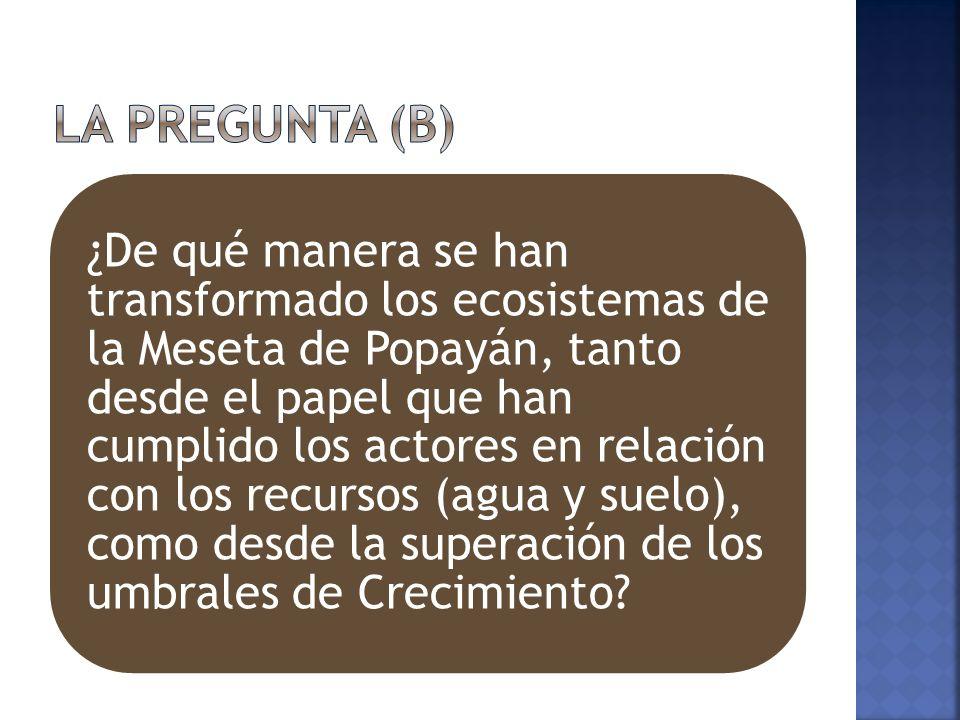 ¿De qué manera se han transformado los ecosistemas de la Meseta de Popayán, tanto desde el papel que han cumplido los actores en relación con los recursos (agua y suelo), como desde la superación de los umbrales de Crecimiento?