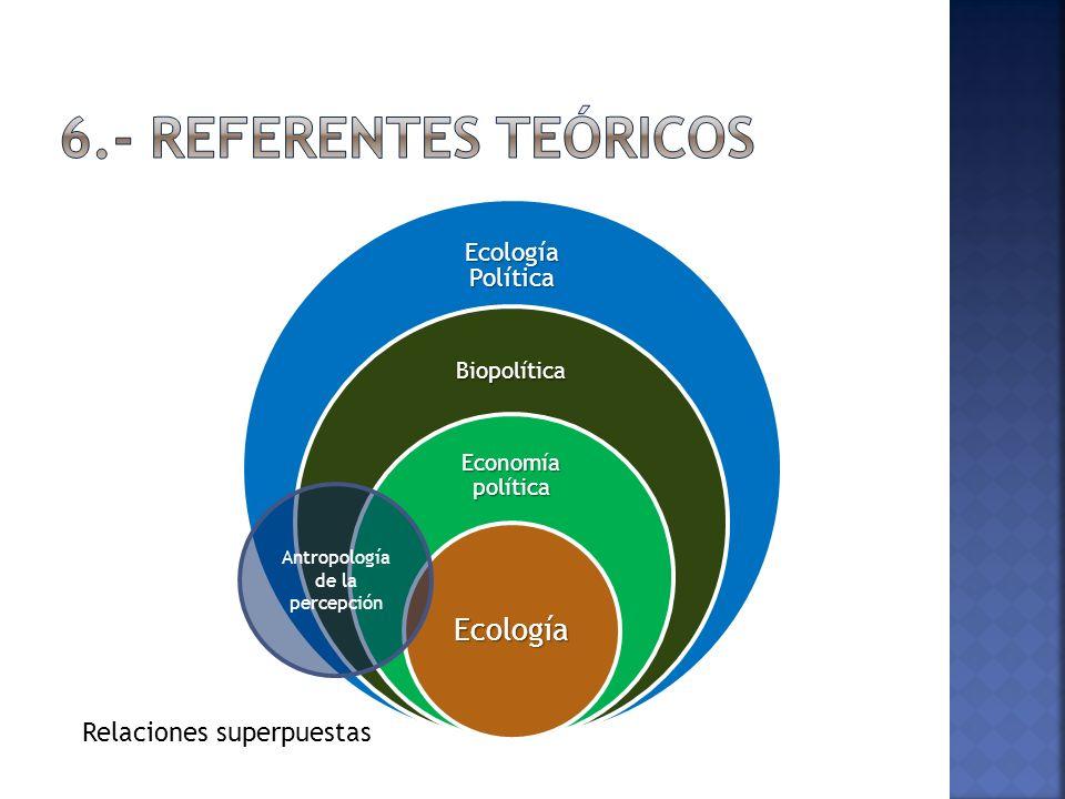 Ecología Política Biopolítica Economía política Ecología Relaciones superpuestas Antropología de la percepción