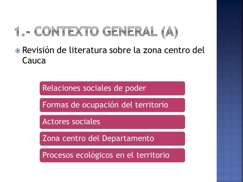 Revisión de literatura sobre la zona centro del Cauca Relaciones sociales de poderFormas de ocupación del territorioActores socialesZona centro del DepartamentoProcesos ecológicos en el territorio