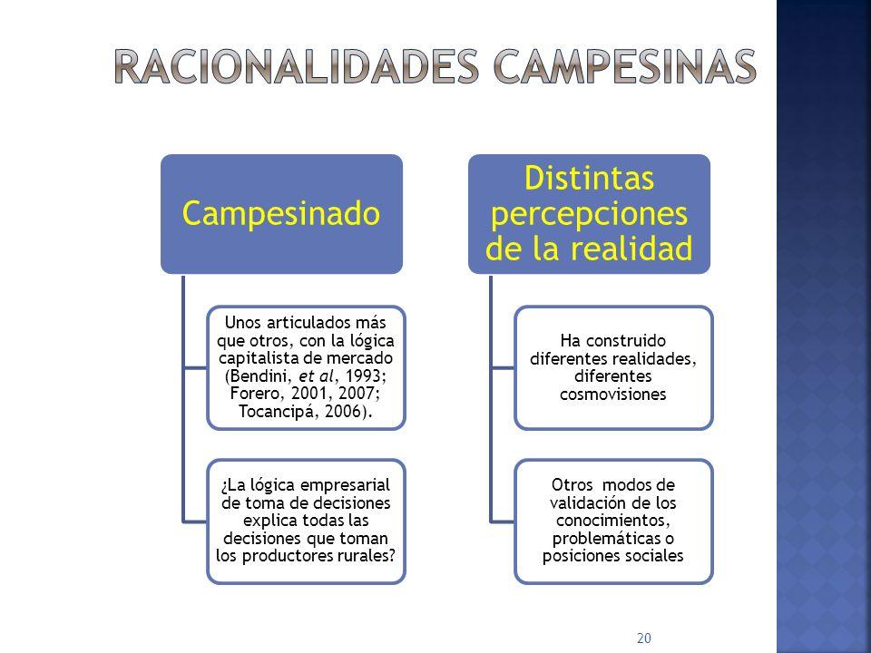Campesinado Unos articulados más que otros, con la lógica capitalista de mercado (Bendini, et al, 1993; Forero, 2001, 2007; Tocancipá, 2006).