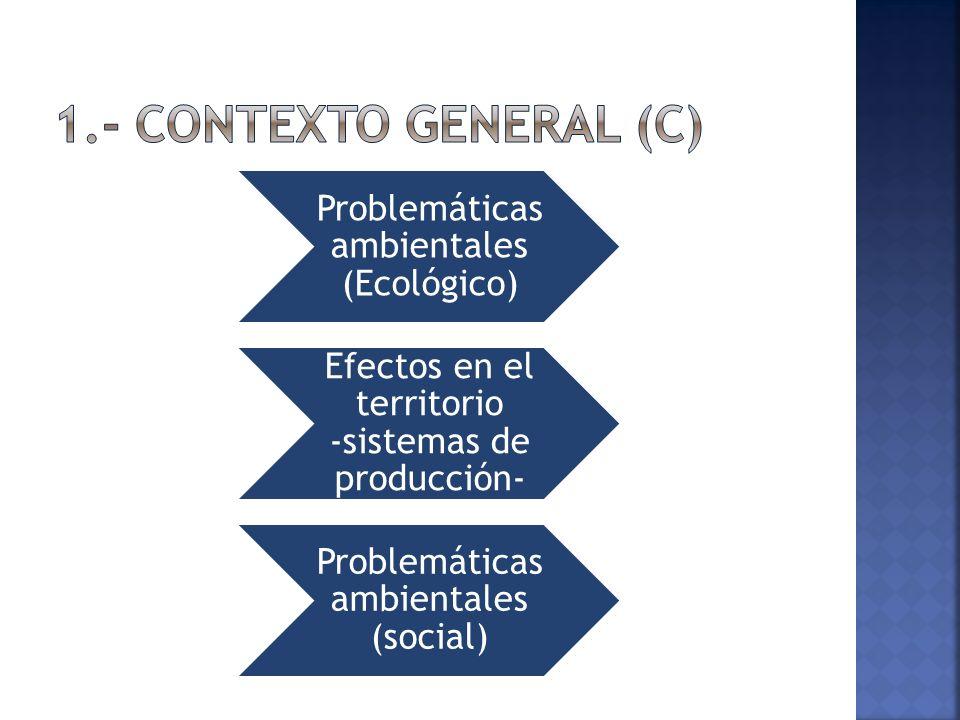 Problemáticas ambientales (Ecológico) Efectos en el territorio -sistemas de producción- Problemáticas ambientales (social)