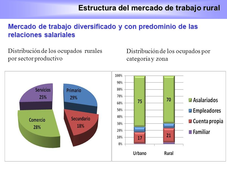 En las regiones Huetares predomina el sector primario pero también las relaciones salariales, mientras que en las regiones del pacífico hay más trabajo independiente Estructura del mercado de trabajo rural Distribución de los ocupados rurales por sector productivo Distribución de los ocupados rurales por categoría