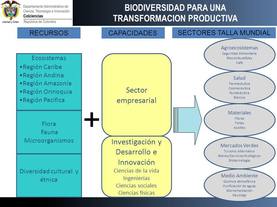 Flora Fauna Microorganismos Ecosistemas Región Caribe Región Andina Región Amazonía Región Orinoquia Región Pacifica Investigación y Desarrollo e Inno