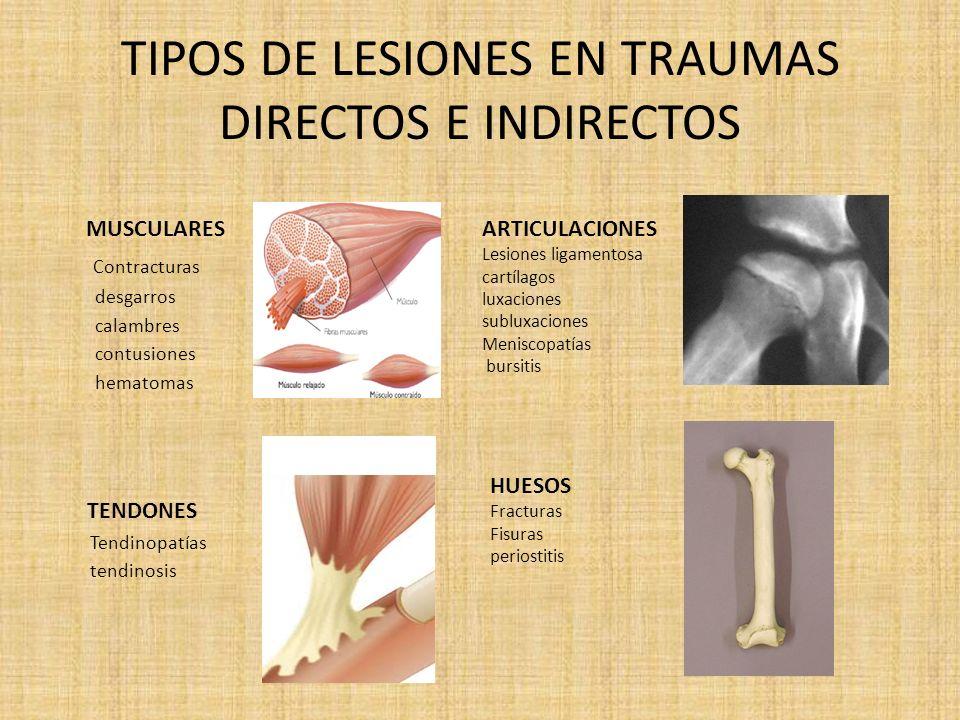 CLASIFICACION DE LAS LESIONES TEJIDOS DUROS HUESOS (fracturas, fisuras, periostitis) TEJIDOS BLANDOS Piel, Músculos, tendones, cartílagos y ligamentos.