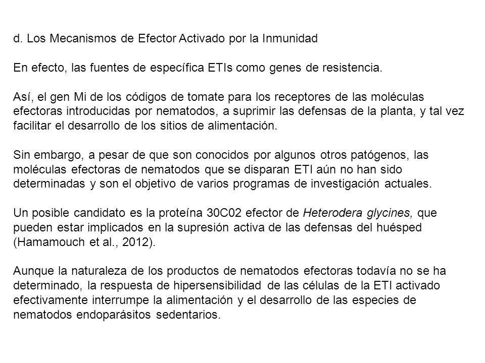 d. Los Mecanismos de Efector Activado por la Inmunidad En efecto, las fuentes de específica ETIs como genes de resistencia. Así, el gen Mi de los códi