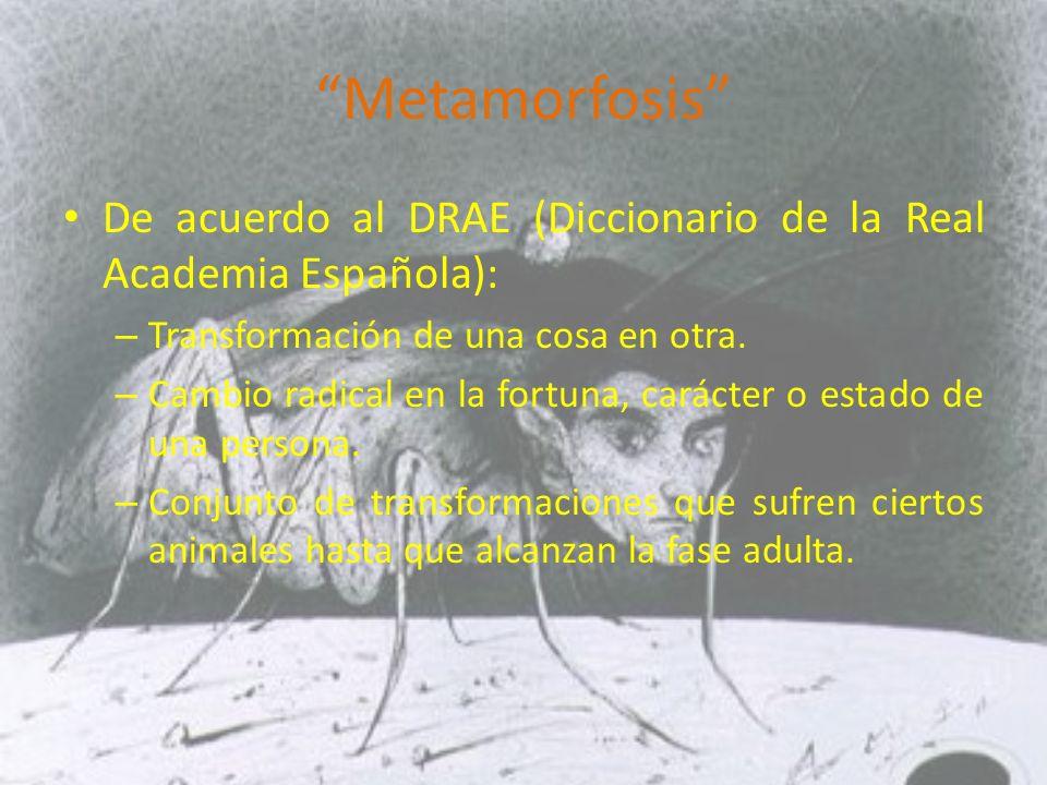 Metamorfosis De acuerdo al DRAE (Diccionario de la Real Academia Española): – Transformación de una cosa en otra.