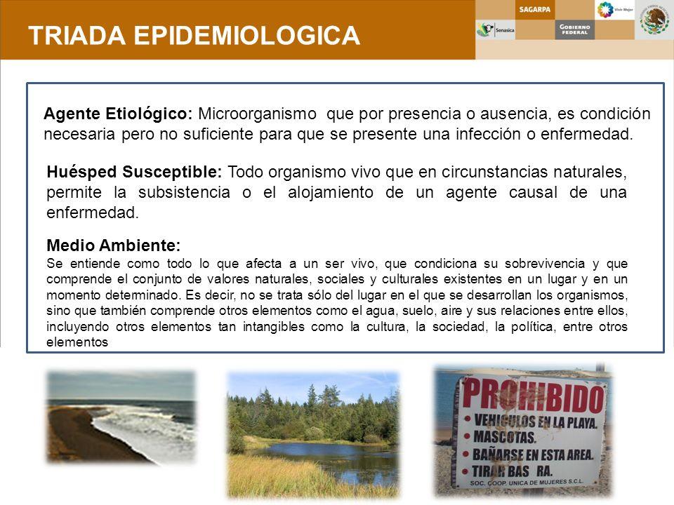 TRIADA EPIDEMIOLOGICA Agente Etiológico: Microorganismo que por presencia o ausencia, es condición necesaria pero no suficiente para que se presente u