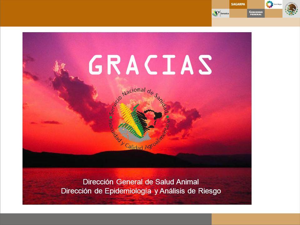 GRACIAS Dirección General de Salud Animal Dirección de Epidemiología y Análisis de Riesgo