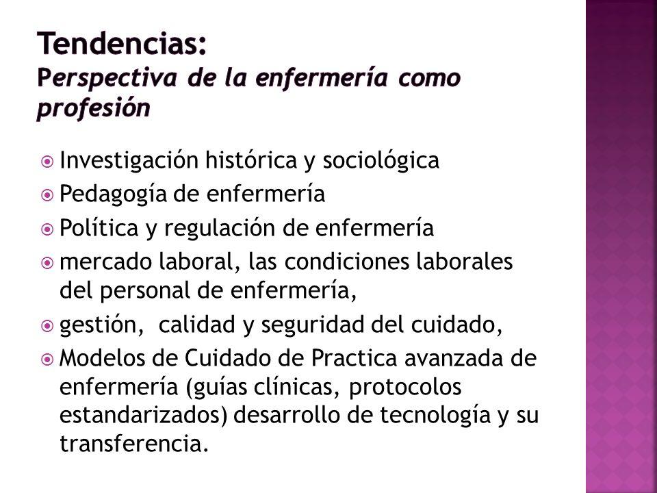 Investigación histórica y sociológica Pedagogía de enfermería Política y regulación de enfermería mercado laboral, las condiciones laborales del perso
