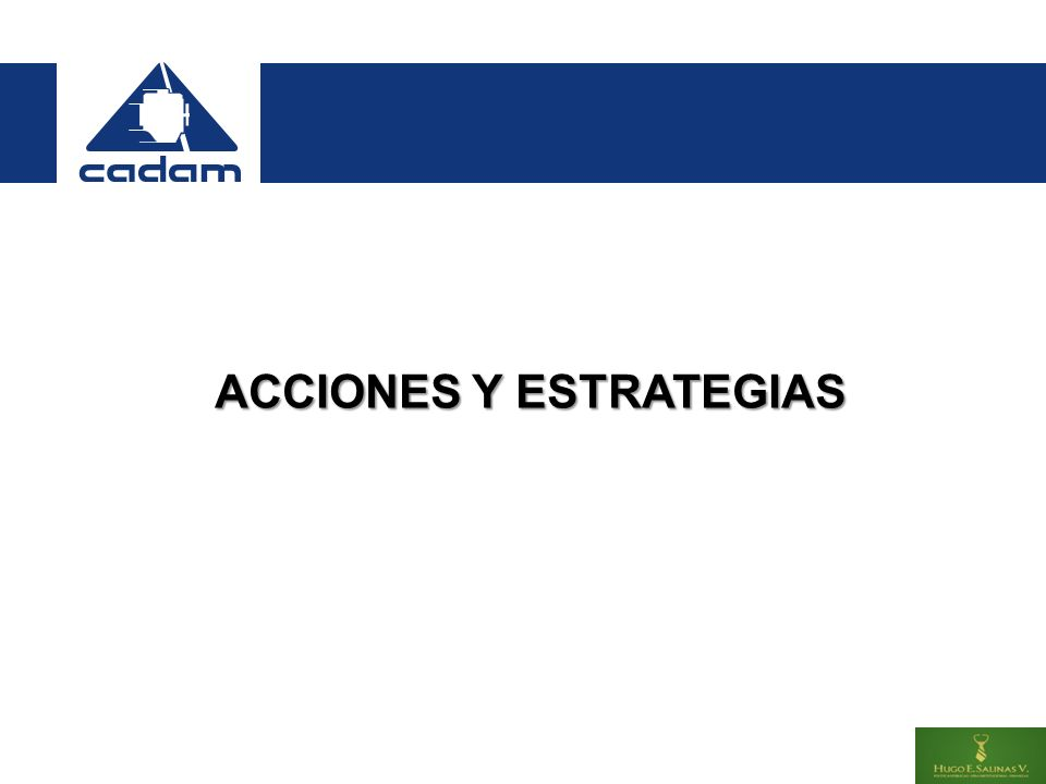 ACCIONES Y ESTRATEGIAS