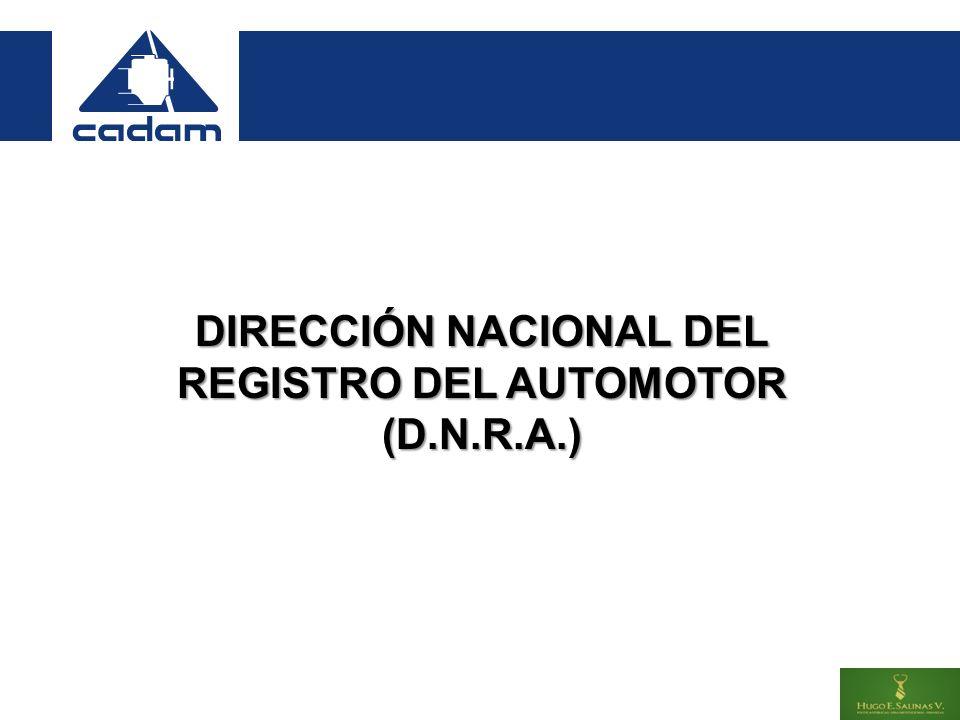 DIRECCIÓN NACIONAL DEL REGISTRO DEL AUTOMOTOR (D.N.R.A.)