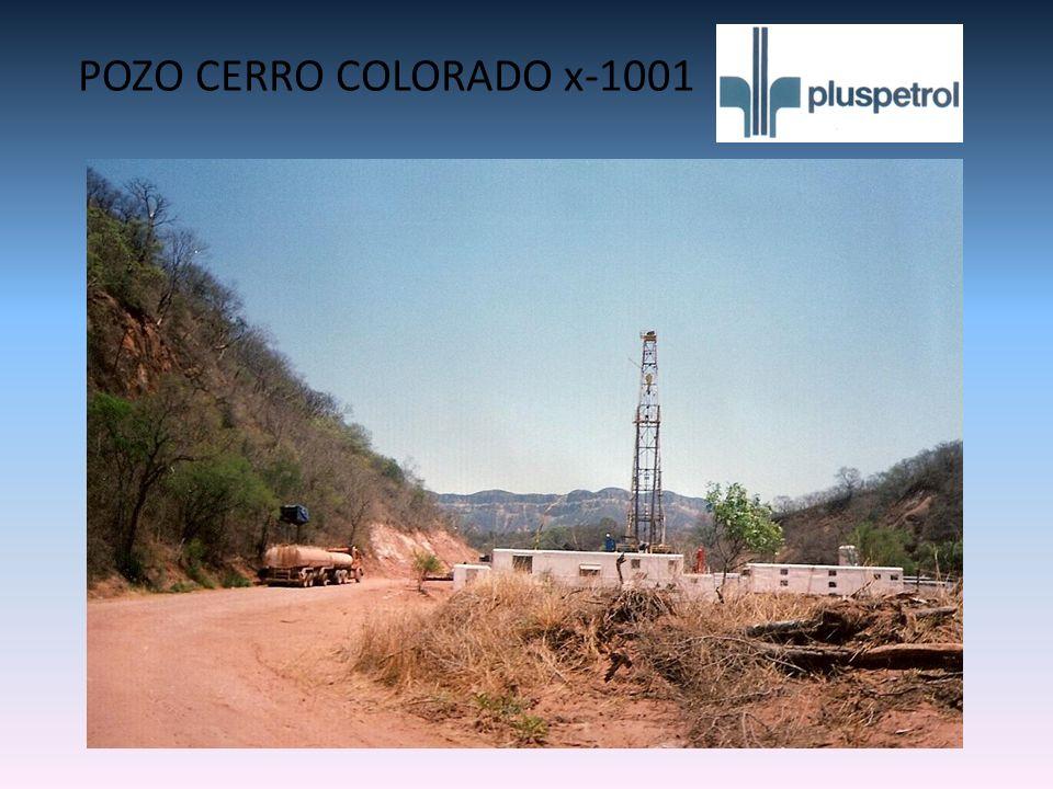 POZO CERRO COLORADO x-1001