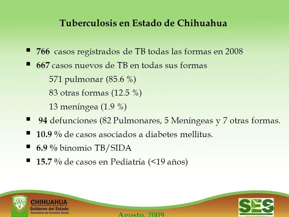 Agosto, 2009 Tuberculosis en Estado de Chihuahua 766 casos registrados de TB todas las formas en 2008 667 casos nuevos de TB en todas sus formas 571 pulmonar (85.6 %) 83 otras formas (12.5 %) 13 meníngea (1.9 %) 94 defunciones (82 Pulmonares, 5 Meníngeas y 7 otras formas.