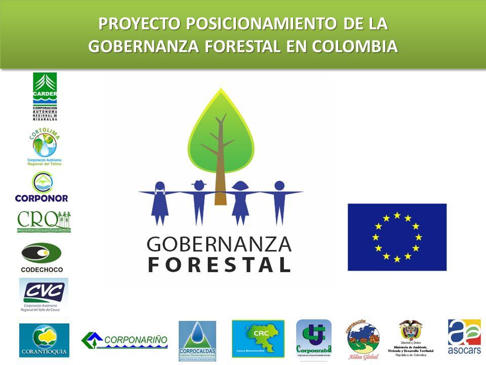 PROYECTO POSICIONAMIENTO DE LA GOBERNANZA FORESTAL EN COLOMBIA PROYECTO POSICIONAMIENTO DE LA GOBERNANZA FORESTAL EN COLOMBIA ELEMENTOS DE CONTEXTUALIZACIÓN PARA LA SELECCIÓN PRELIMINAR DE UN CONJUNTO MÍNIMO DE CRITERIOS E INDICADORES DE MANEJO FORESTAL SOSTENIBLE JOSÉ MIGUEL OROZCO M.