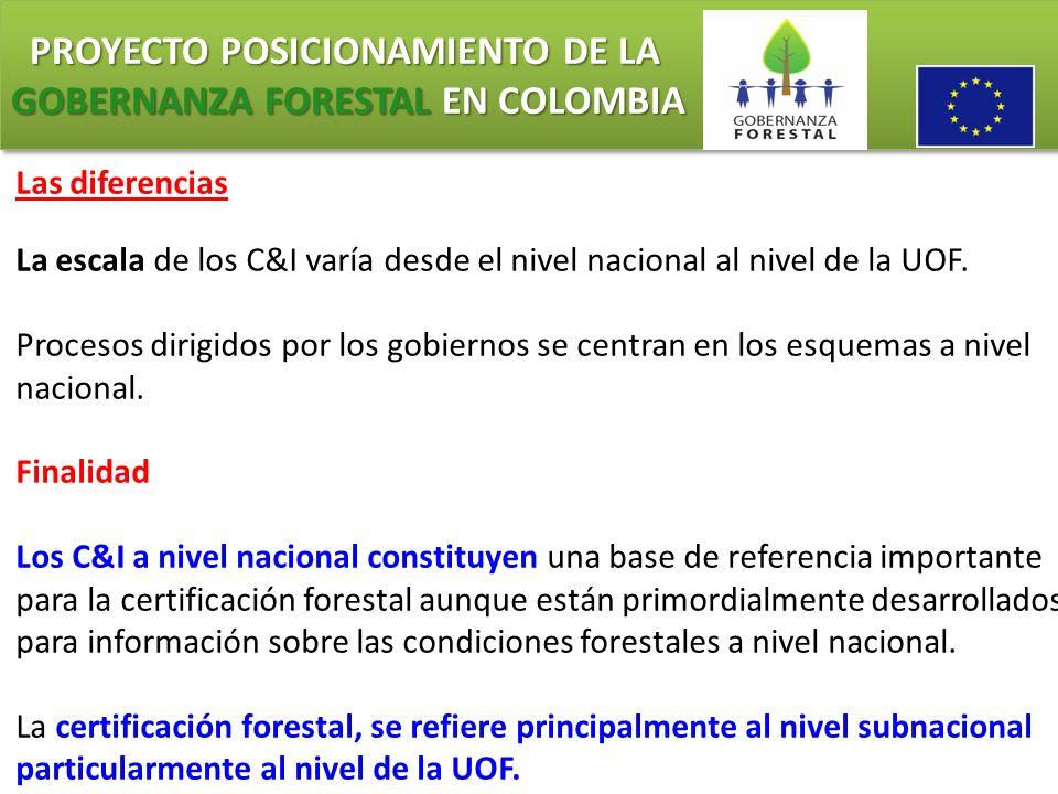 PROYECTO POSICIONAMIENTO DE LA GOBERNANZA FORESTAL EN COLOMBIA PROYECTO POSICIONAMIENTO DE LA GOBERNANZA FORESTAL EN COLOMBIA Las diferencias La escal