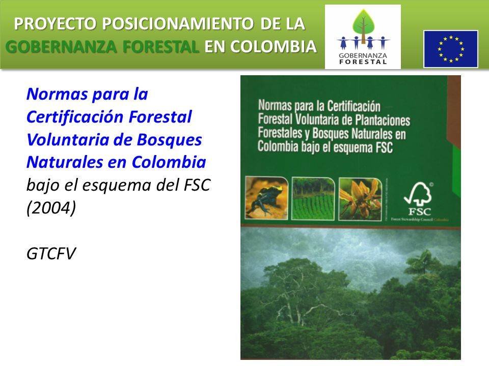 PROYECTO POSICIONAMIENTO DE LA GOBERNANZA FORESTAL EN COLOMBIA PROYECTO POSICIONAMIENTO DE LA GOBERNANZA FORESTAL EN COLOMBIA Normas para la Certifica