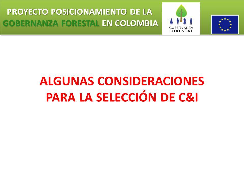 PROYECTO POSICIONAMIENTO DE LA GOBERNANZA FORESTAL EN COLOMBIA PROYECTO POSICIONAMIENTO DE LA GOBERNANZA FORESTAL EN COLOMBIA ALGUNAS CONSIDERACIONES