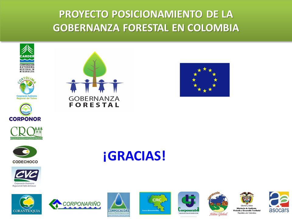 PROYECTO POSICIONAMIENTO DE LA GOBERNANZA FORESTAL EN COLOMBIA ¡GRACIAS!