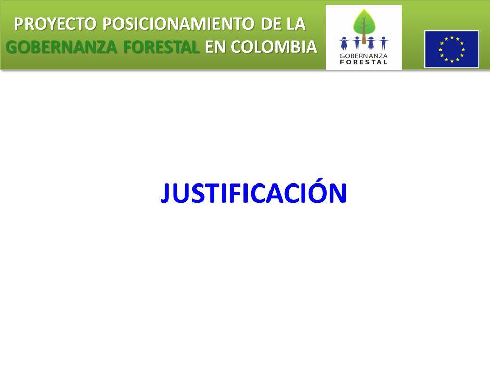 PROYECTO POSICIONAMIENTO DE LA GOBERNANZA FORESTAL EN COLOMBIA PROYECTO POSICIONAMIENTO DE LA GOBERNANZA FORESTAL EN COLOMBIA Resultado 2: Modernización de la Administración Forestal en las Autoridades Ambientales ejecutoras de la Acción (CAR) Actividades: Seleccionar, ajustar y adoptar los criterios e indicadores mínimos para el manejo forestal sostenible.