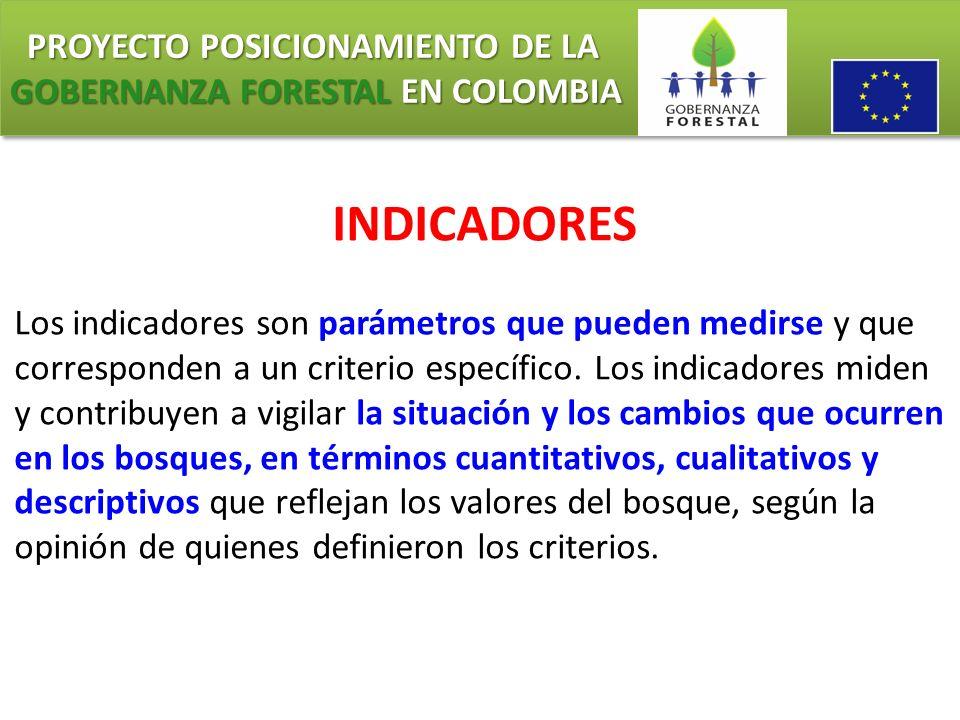 PROYECTO POSICIONAMIENTO DE LA GOBERNANZA FORESTAL EN COLOMBIA PROYECTO POSICIONAMIENTO DE LA GOBERNANZA FORESTAL EN COLOMBIA INDICADORES Los indicado