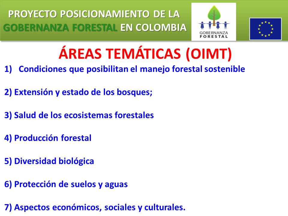 PROYECTO POSICIONAMIENTO DE LA GOBERNANZA FORESTAL EN COLOMBIA PROYECTO POSICIONAMIENTO DE LA GOBERNANZA FORESTAL EN COLOMBIA OBJETIVO DE LOS C&I El objetivo final de los criterios e indicadores es promover prácticas mejoradas de ordenación forestal en el curso del tiempo, así como fomentar el desarrollo de un patrimonio forestal más sano y productivo, tomando en cuenta las necesidades de índole social, económica, ambiental, cultural y espiritual de todos los grupos interesados, en los distintos países