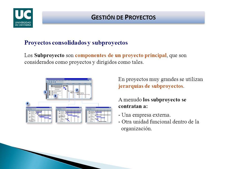 G ESTIÓN DE P ROYECTOS Proyectos consolidados y subproyectos Los Subproyecto son componentes de un proyecto principal, que son considerados como proye
