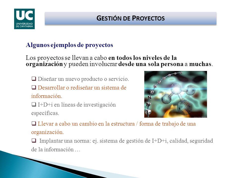 G ESTIÓN DE P ROYECTOS Algunos ejemplos de proyectos Los proyectos se llevan a cabo en todos los niveles de la organización y pueden involucrar desde