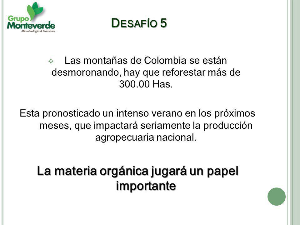 Las montañas de Colombia se están desmoronando, hay que reforestar más de 300.00 Has.