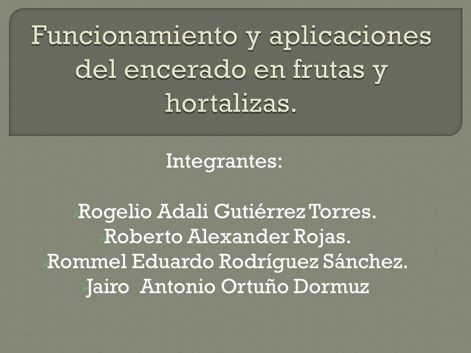 Integrantes: Rogelio Adali Gutiérrez Torres. Roberto Alexander Rojas. Rommel Eduardo Rodríguez Sánchez. Jairo Antonio Ortuño Dormuz
