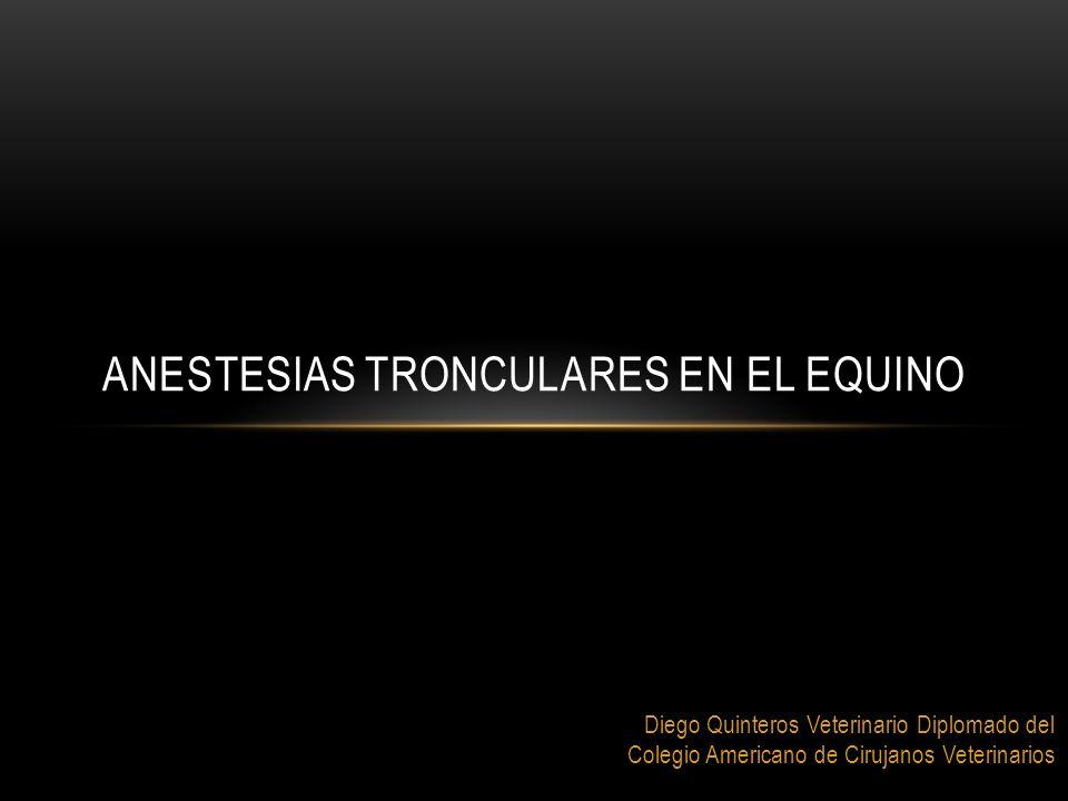 Diego Quinteros Veterinario Diplomado del Colegio Americano de Cirujanos Veterinarios ANESTESIAS TRONCULARES EN EL EQUINO
