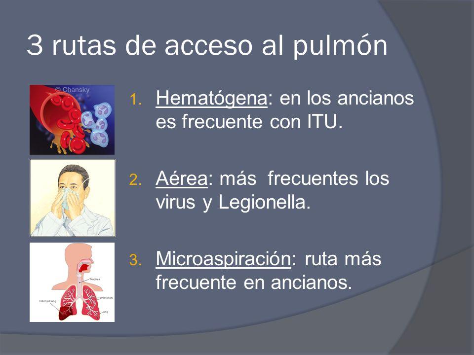 3 rutas de acceso al pulmón 1. Hematógena: en los ancianos es frecuente con ITU. 2. Aérea: más frecuentes los virus y Legionella. 3. Microaspiración: