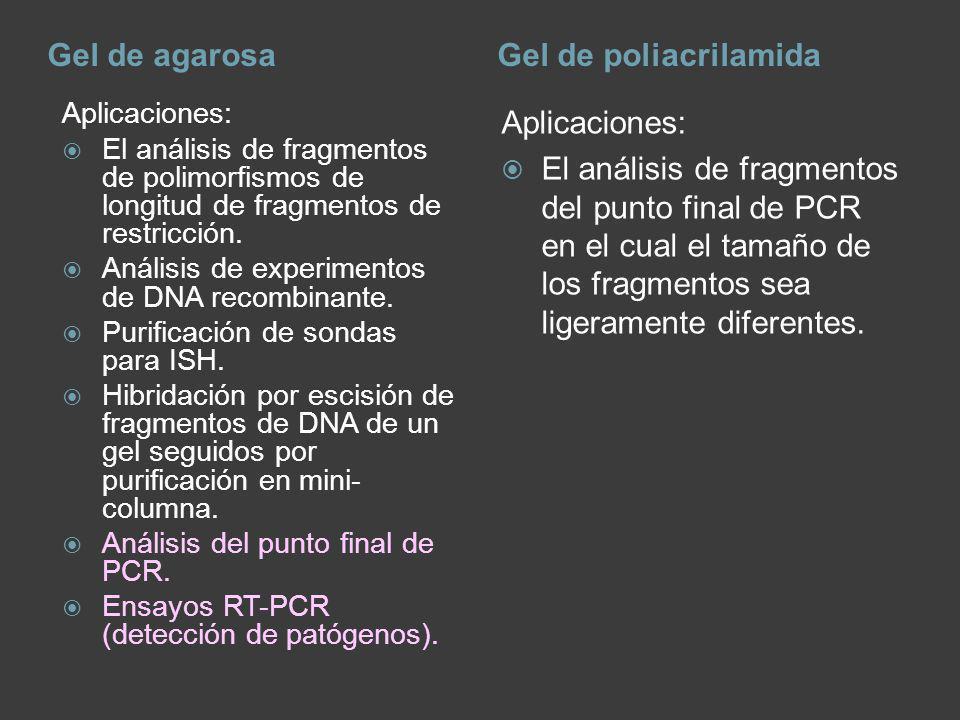 Gel de agarosaGel de poliacrilamida Aplicaciones: El análisis de fragmentos de polimorfismos de longitud de fragmentos de restricción. Análisis de exp