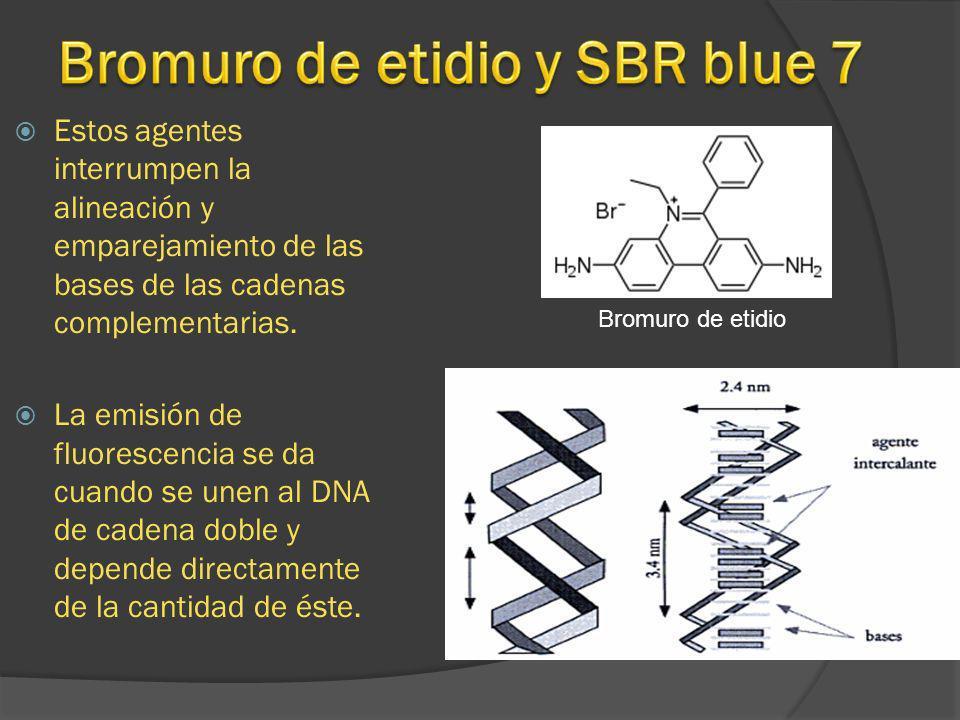 Estos agentes interrumpen la alineación y emparejamiento de las bases de las cadenas complementarias. La emisión de fluorescencia se da cuando se unen