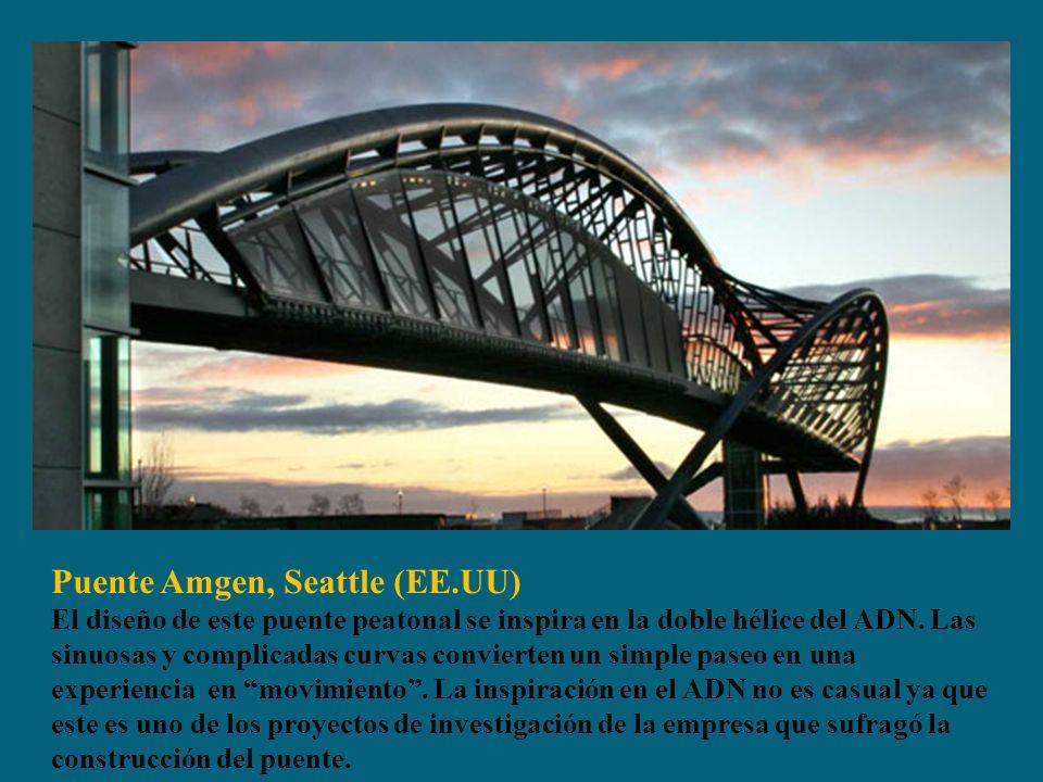 Puente Amgen, Seattle (EE.UU) El diseño de este puente peatonal se inspira en la doble hélice del ADN.