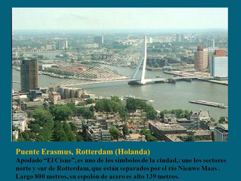 Puente Erasmus, Rotterdam (Holanda) Apodado El Cisne, es uno de los símbolos de la ciudad,: une los sectores norte y sur de Rotterdam, que están separados por el río Nieuwe Maas.