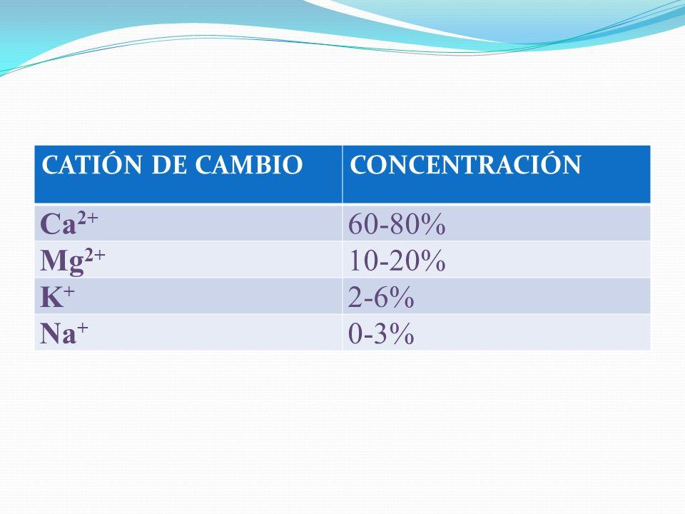 CATIÓN DE CAMBIOCONCENTRACIÓN Ca 2+ 60-80% Mg 2+ 10-20% K+K+ 2-6% Na + 0-3%