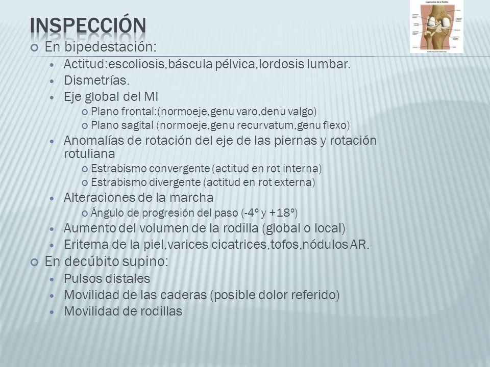 En bipedestación: Actitud:escoliosis,báscula pélvica,lordosis lumbar. Dismetrías. Eje global del MI Plano frontal:(normoeje,genu varo,denu valgo) Plan