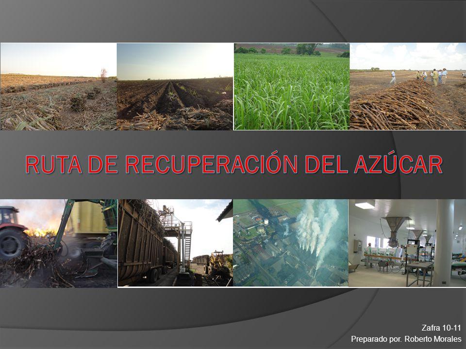 Zafra 10-11 Preparado por. Roberto Morales